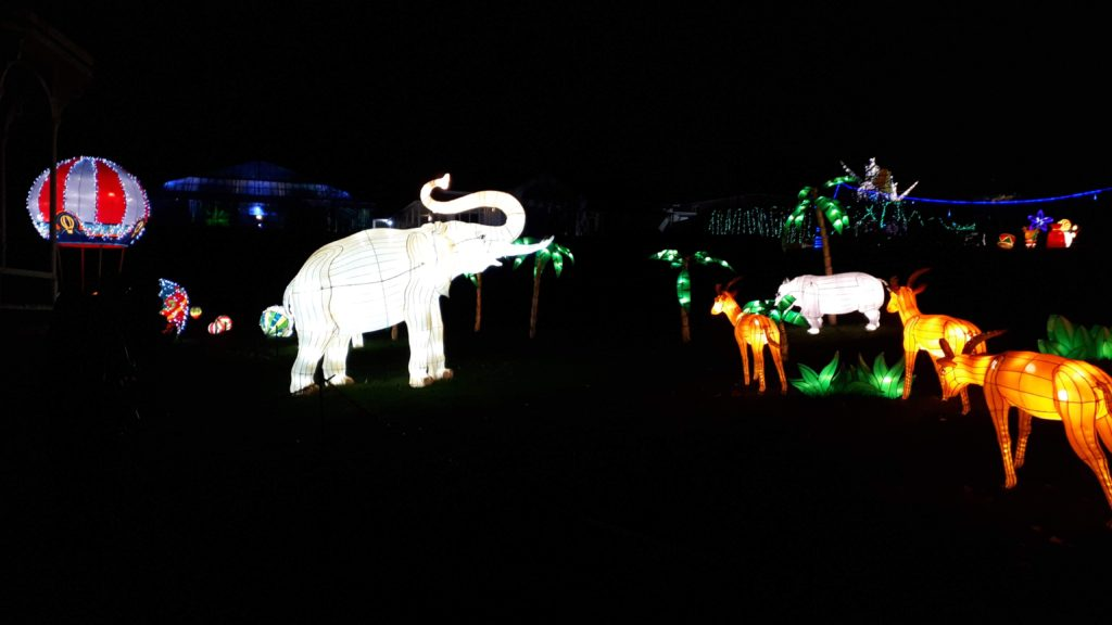 Birmingham Magic Lantern Festival - elephant