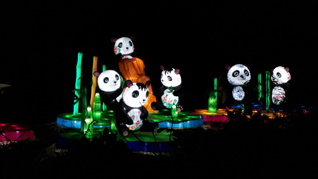 Birmingham Magic Lantern Festival - animated pandas with painted flowers on their bodies