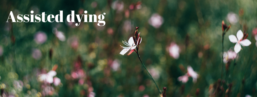 "Meadow of flowers with text ""Assisted Dying"""